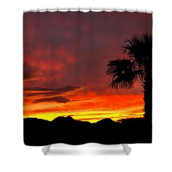 Palm Tree Silhouette Shower Curtain by Robert Bales
