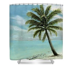 Palm Tree Study Shower Curtain by Cecilia Brendel