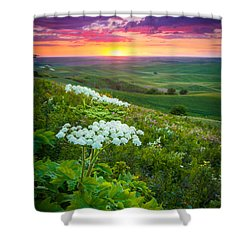 Palouse Flowers Shower Curtain by Inge Johnsson