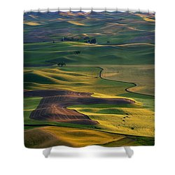 Palouse Shadows Shower Curtain by Mike  Dawson