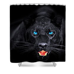 Panther Shower Curtain by Jean raphael Fischer
