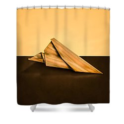 Paper Airplanes Of Wood 2 Shower Curtain by Yo Pedro