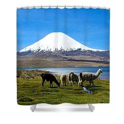 Parinacota Volcano Lake Chungara Chile Shower Curtain by Kurt Van Wagner