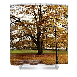 Park Life Shower Curtain by Terri Waters