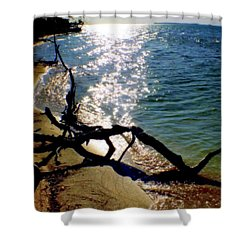 Passing Of Time Shower Curtain by Karen Wiles