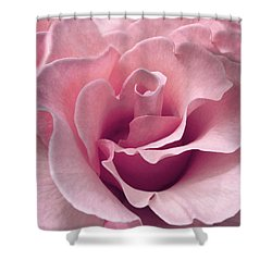 Passion Pink Rose Flower Shower Curtain by Jennie Marie Schell