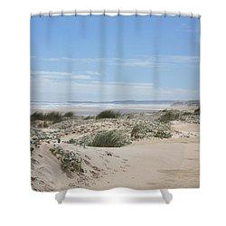 Pastel Dunes Shower Curtain by Elaine Teague