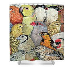 Patchwork Birds Shower Curtain by Ditz