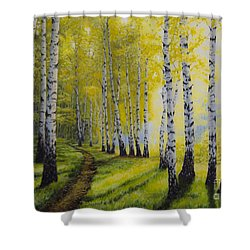 Path To Autumn Shower Curtain by Veikko Suikkanen
