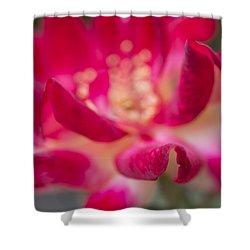 Patterned Petals Shower Curtain by Priya Ghose