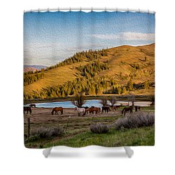 Patterson Mountain Afternoon View Shower Curtain by Omaste Witkowski
