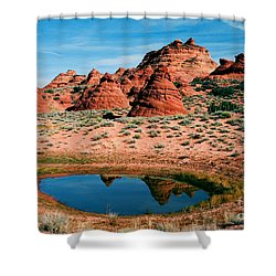 Paw Hole Reflections Shower Curtain by Mike  Dawson
