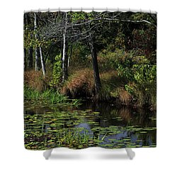 Peaceful Pond Shower Curtain by Karol Livote