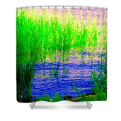 Peaceful Stream  Quebec Landscape Art Tall Grasses At The Lakeshore Waterscene Carole Spandau Shower Curtain by Carole Spandau