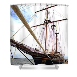 Peacemaker Shower Curtain by Gordon Elwell