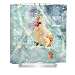 Peaches In The Snow Shower Curtain by Amy Tyler
