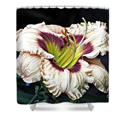 Peachy With Ruffles Lily Shower Curtain by Elizabeth Winter