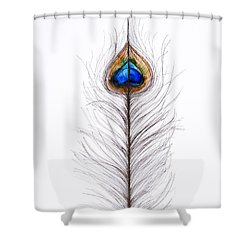 Peacock Abstract Shower Curtain by Tara Thelen