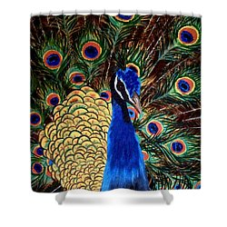 Peacock Shower Curtain by Debbie LaFrance