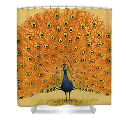 Peacock Shower Curtain by English School