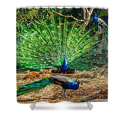Peacocking Shower Curtain by Omaste Witkowski