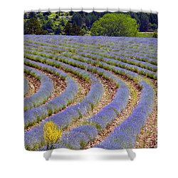 Peaking Shower Curtain by Bob Phillips