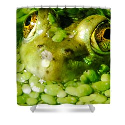Peeping Through The Algae  Shower Curtain by Optical Playground By MP Ray
