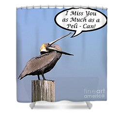 Pelican Miss You Card Shower Curtain by Al Powell Photography USA