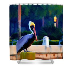 Pelican On Post Artistic Shower Curtain by Dan Friend