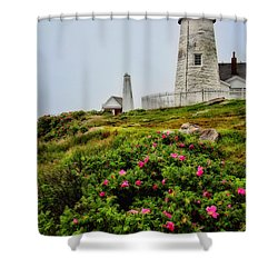 Pemaquid Point Shower Curtain by Karol Livote