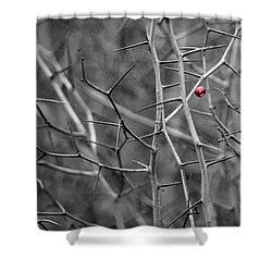 Per Aspera - Featured 3 Shower Curtain by Alexander Senin