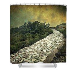 Perdus Et Trouves Shower Curtain by Taylan Soyturk
