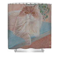 Persian Cat Shower Curtain by Cybele Chaves