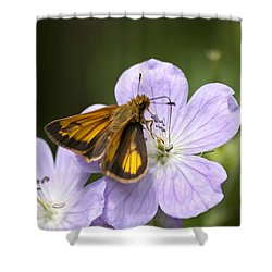 Petal To Petal Shower Curtain by Christina Rollo