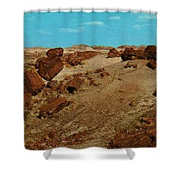 Petrified Forest National Park Shower Curtain by Ruth  Housley