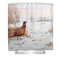 Pheasant And Bramblefinch In The Snow Shower Curtain by Carl Donner