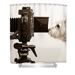 Pho Dog Grapher Shower Curtain by Edward Fielding