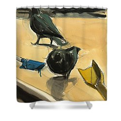 Pigeons Shower Curtain by Daniel Clarke