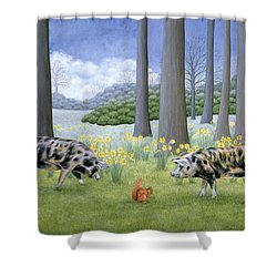 Piggy In The Middle Shower Curtain by Ditz