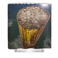 Piling Shower Curtain by David Stone
