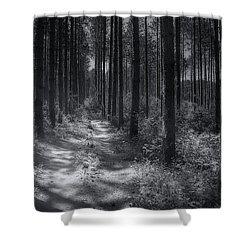 Pine Grove Shower Curtain by Scott Norris