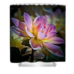 Pink Blossom  Shower Curtain by Athena Mckinzie