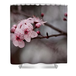 Pink Blossoms Shower Curtain by Michelle Wrighton