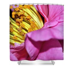 Pink Camellia And Stamen Shower Curtain by Kaye Menner