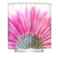 Pink Fan Shower Curtain by Andrea Kollo