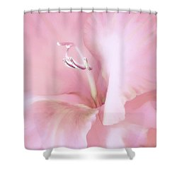Pink Gladiolus Flower Shower Curtain by Jennie Marie Schell