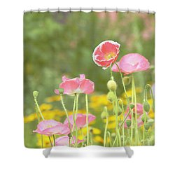 Pink Poppies Shower Curtain by Kim Hojnacki