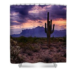Pink Skies At The Superstitions Shower Curtain by Saija  Lehtonen