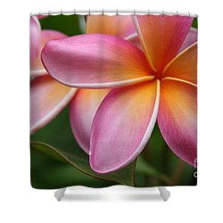 Places Of The Heart Shower Curtain by Sharon Mau