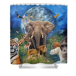 Planet Earth Shower Curtain by David Stribbling
